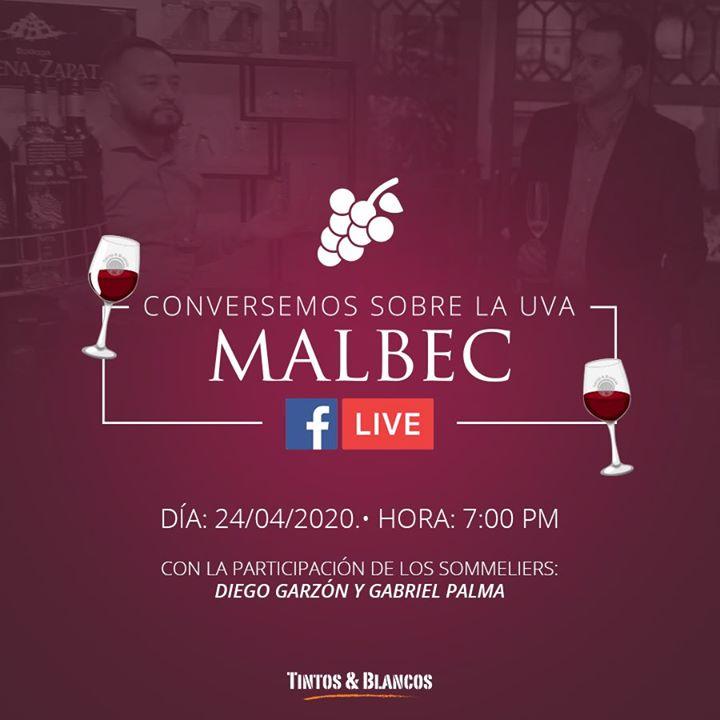 Conversemos sobre el Malbec