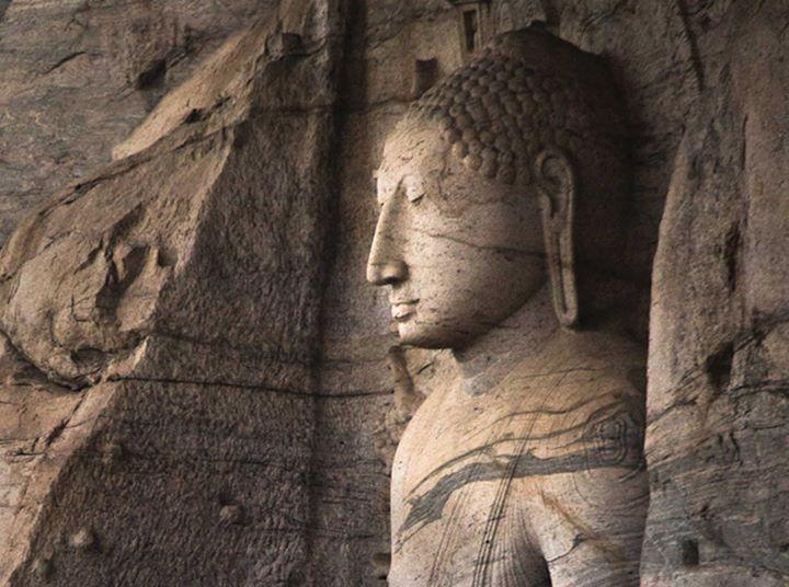 aprofundando o budismo | curso online