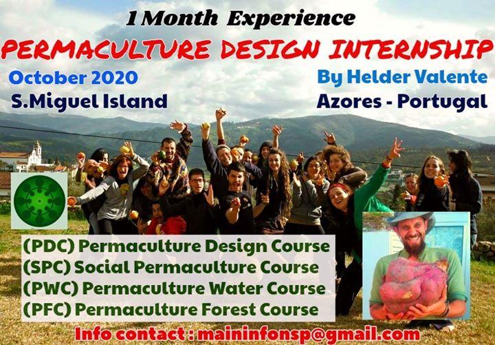 NSP Permaculture Design Internship Azores 2020
