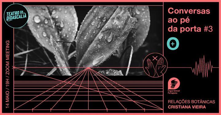Conversas ao pé da porta #3 - Relações botânicas