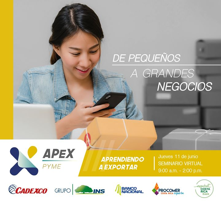 APEX PYME   Seminario virtual para PYMES