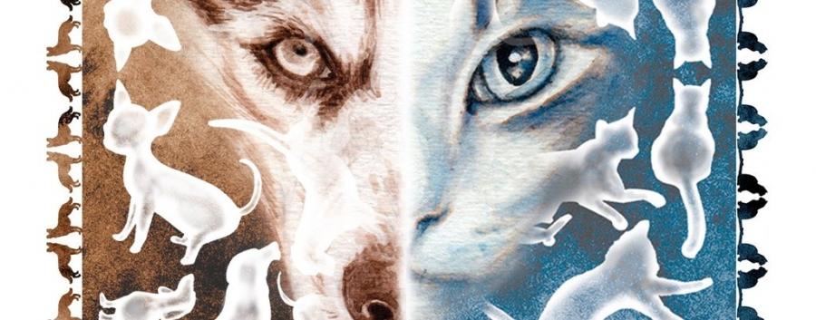 Cartadas de Cães & Gatos // Exposição