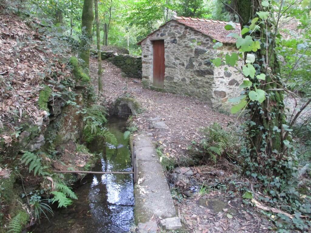 Caminhando na Rota dos 3 Rios e Pateira de Fermentelos