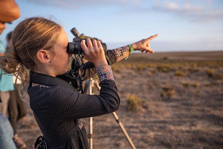 11º Festival de Observação de Aves & Atividades da Natureza