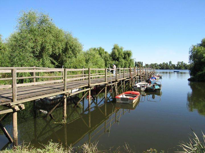 Caminhando pelas Aldeias Avieiras e Passeio de Barco