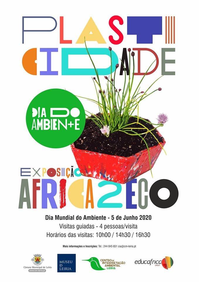 Africa2Eco