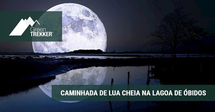 Caminhada de Lua Cheia na Lagoa de Óbidos
