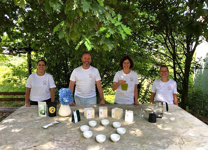 Visita plantação de chá