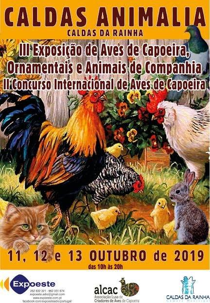 CALDAS ANIMÁLIA - 3ª EXPOSIÇÃO DE AVES DE CAPOEIRA ORNAMENTAIS E ANIMAIS DE COMPANHIA