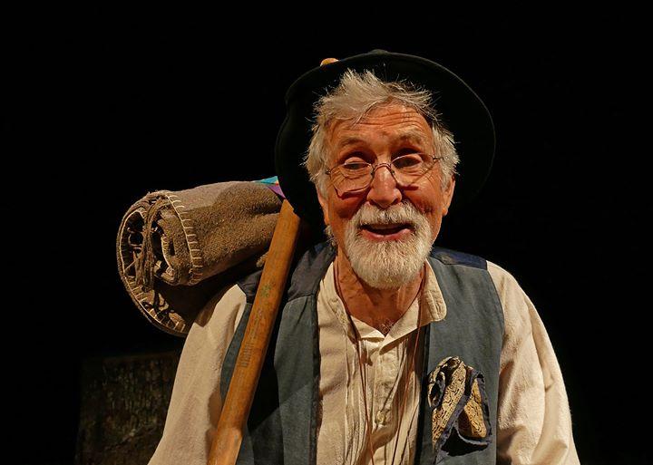 Dom Quixote de Dublin