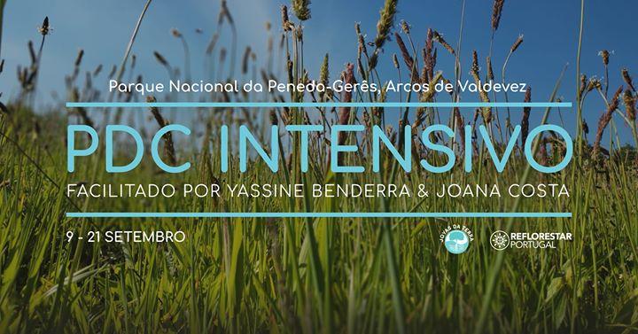PDC: Curso de Design em Permacultura (intensivo)