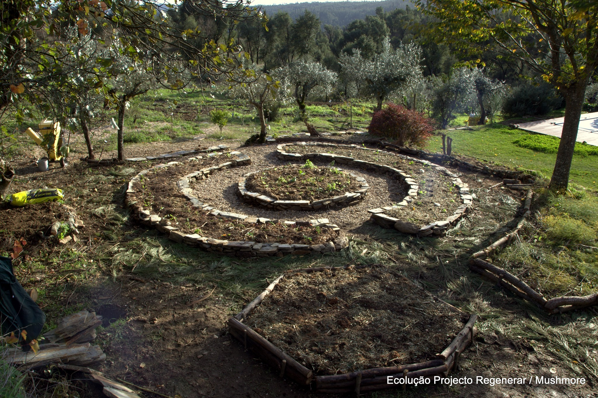 Jardins Comestíveis micorrizados
