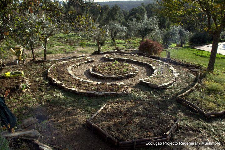 Oficina de hortas-jardim micorrizadas
