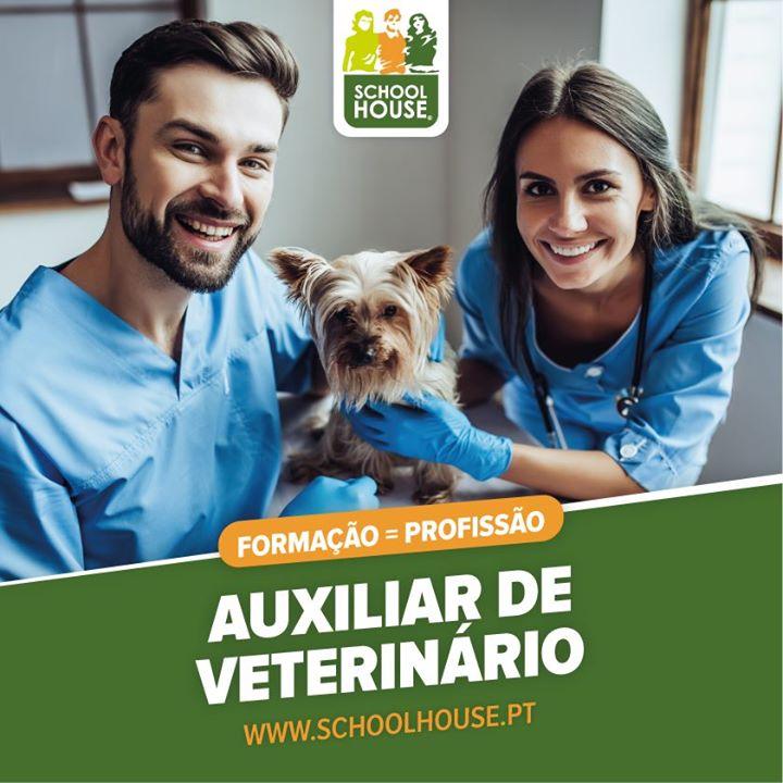 Curso de Auxiliar de Veterinária