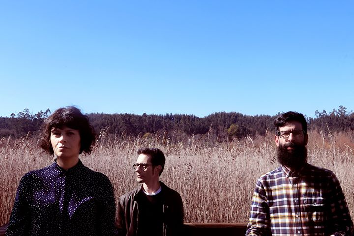 Birds Are Indie apresentam 'Migrations - the travel diaries #1'
