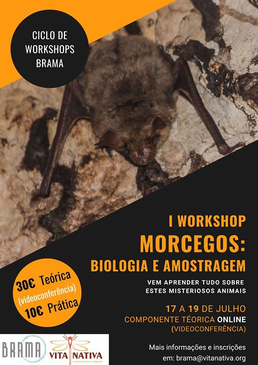 Morcegos: Biologia e Amostragem - I Ciclo de Workshops Brama