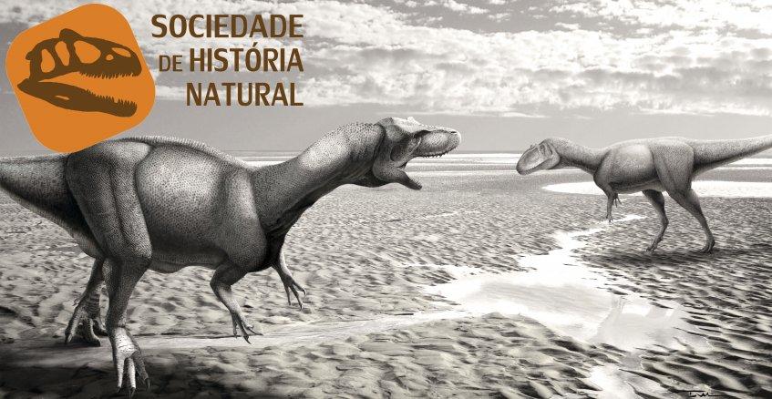 Geologia e Paleontologia de Santa Cruz: Das arribas às calçadas