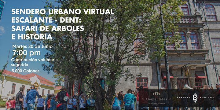 Sendero Urbano por Escalante: Safari Virtual