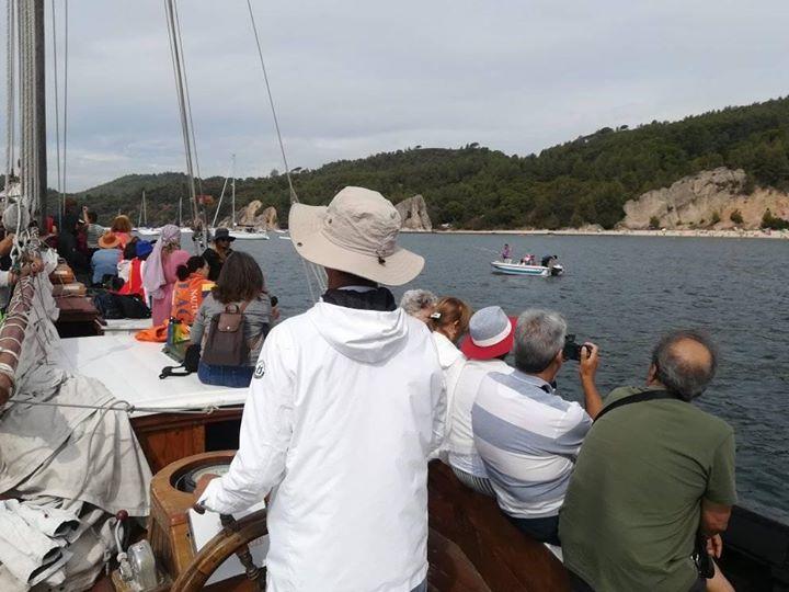 Croisière à Arrábida dans un Galion du Sel!