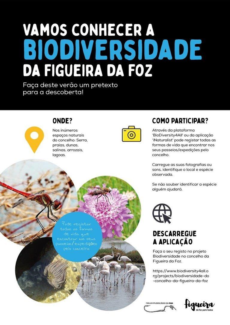 Vamos conhecer a biodiversidade do concelho da Figueira da Foz