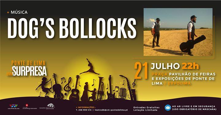 Dog's Bollocks | Ponte de Lima é Uma Surpresa