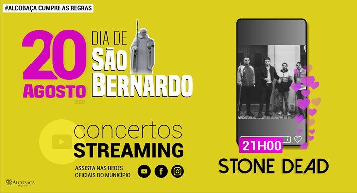 Dia de São Bernardo   Stone Dead