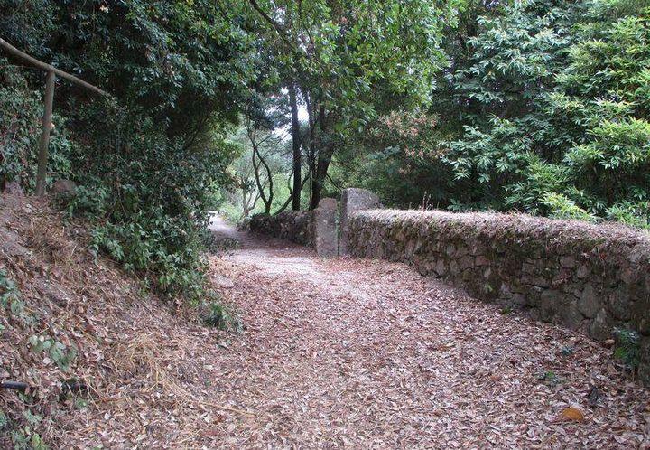 Caminhando da Barragem do Rio da Mula à Aldeia do Penedo