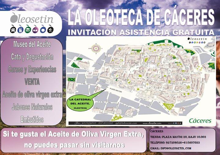 Que hacer en Cáceres. Visita Oleosetin, La Catedral del Aceite