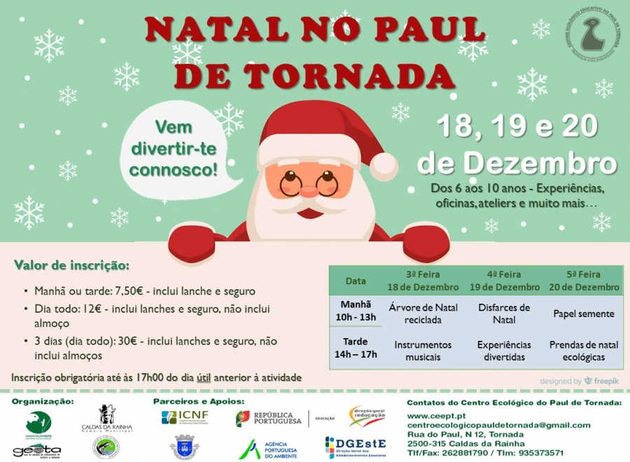 Férias de Natal do Paul de Tornada
