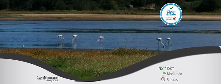 Lagoa Selvagem