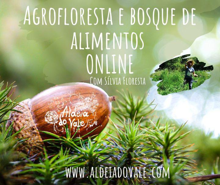 Agrofloresta e bosque de alimentos