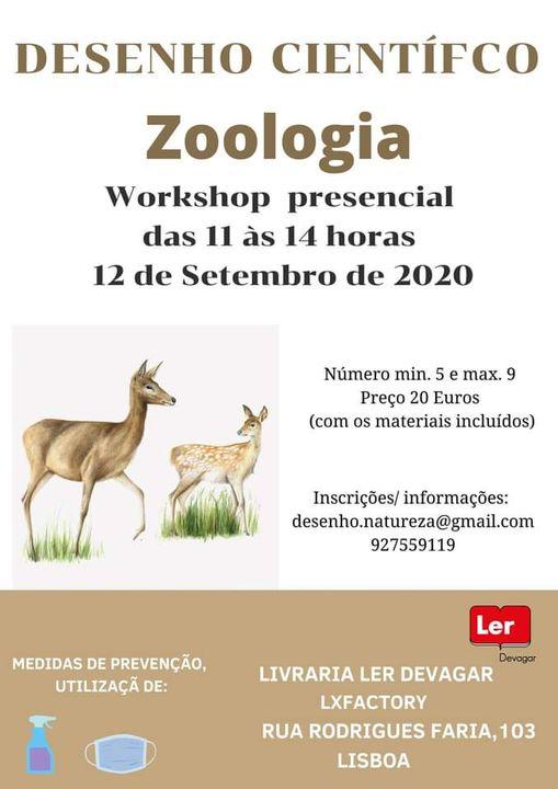 Workshop de Desenho científico.Zoologia