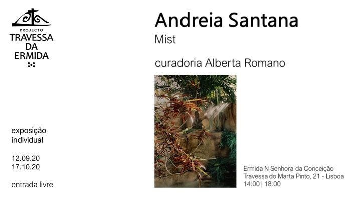 Mist | Andreia Santana