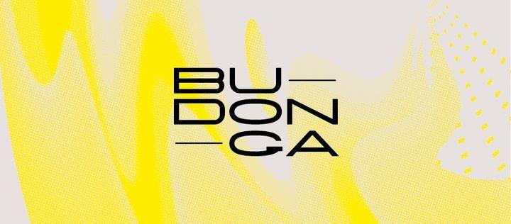 Budonga ⟡ Exposição de Fernando Brito ⟡ ZDB