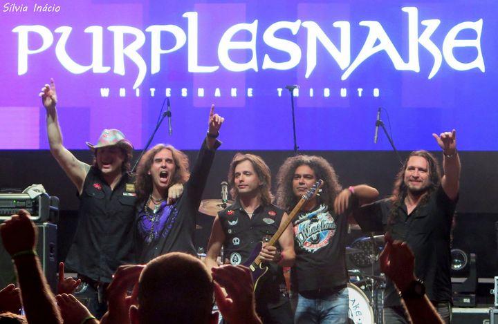PURPLESNAKE // Whitesnake Tributo // €8