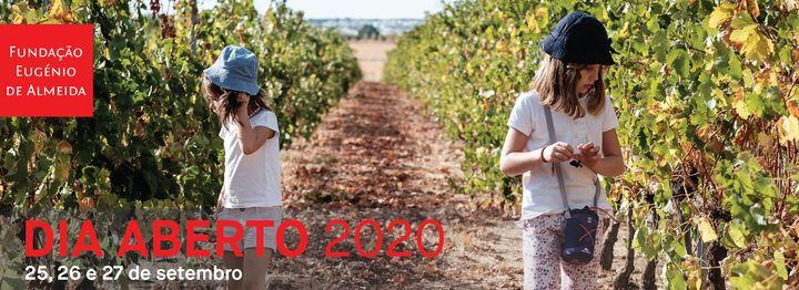 Dia Aberto 2020