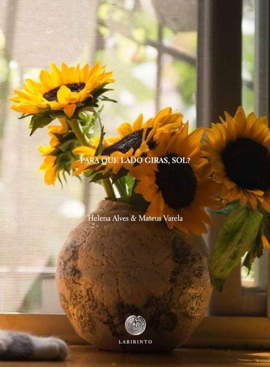 Apresentação do livro 'Para Que Lado Giras, Sol'