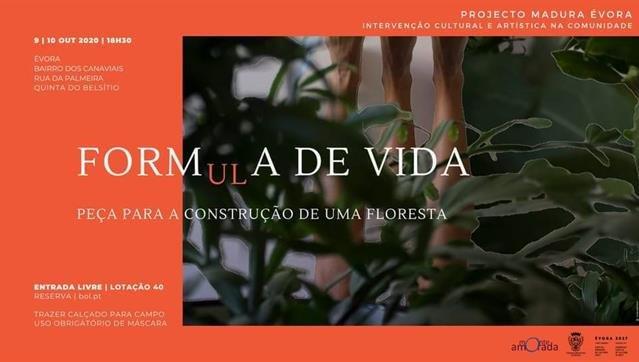 FORM(ul)A de VIDA