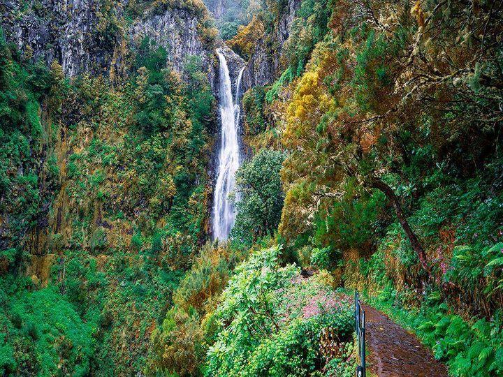 Caminhando em Levadas e Veredas da Madeira