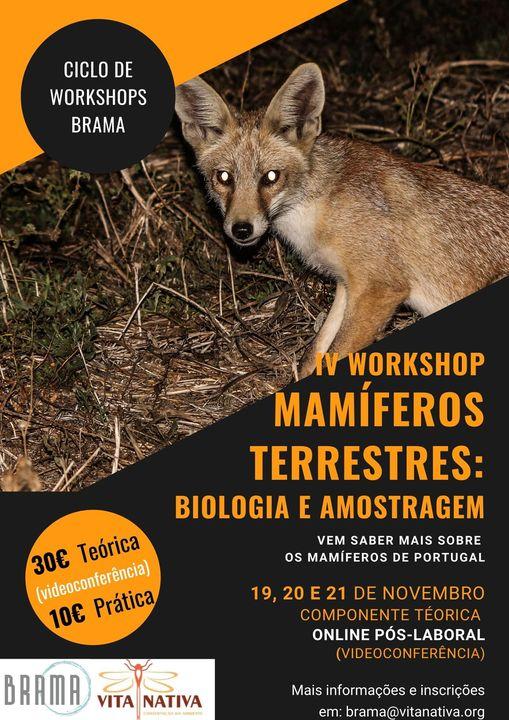 Mamíferos Terrestres: Biologia e Amostragem - I Ciclo de Workshops Brama
