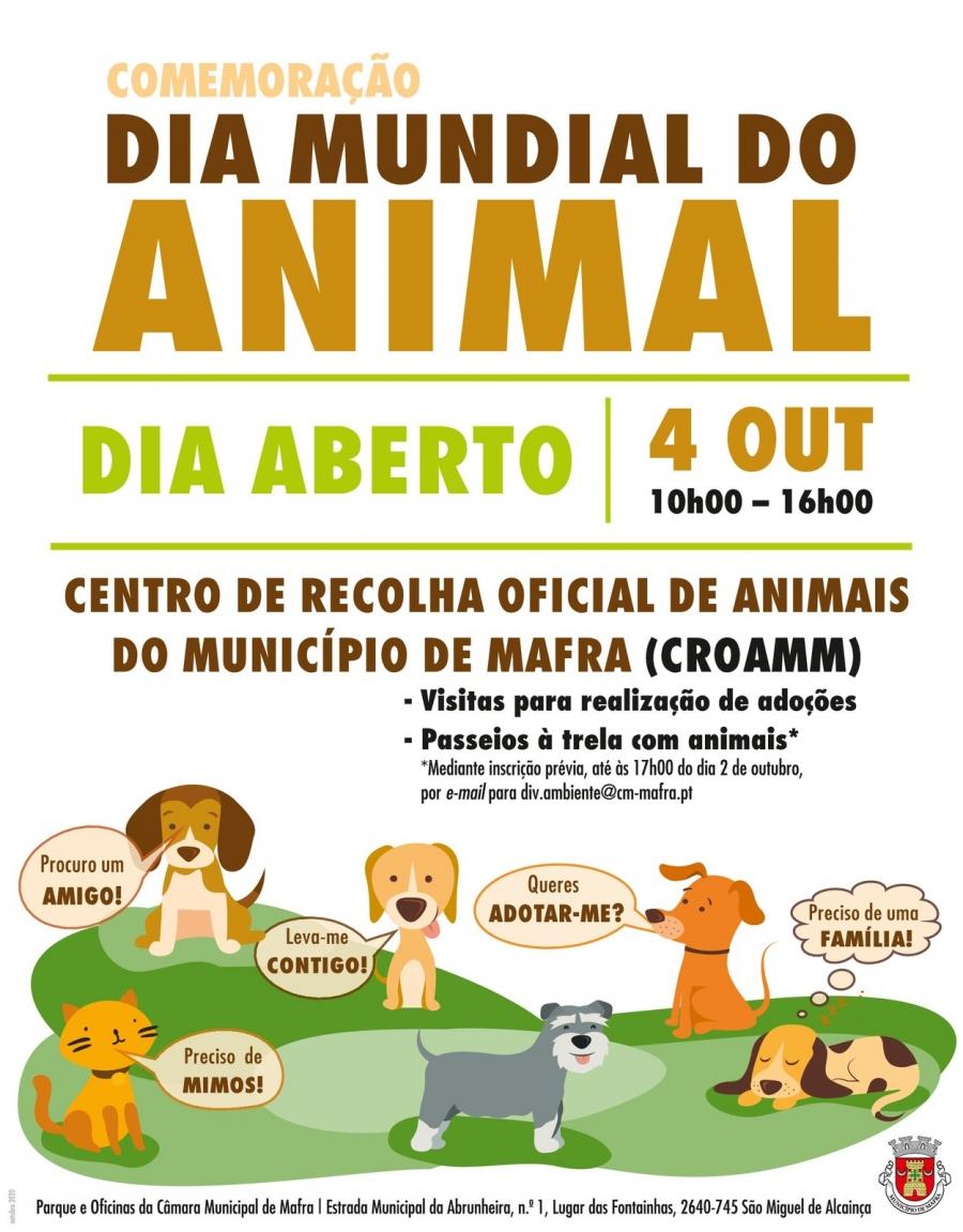 'Dia Aberto' no Centro de Recolha Oficial de Animais do Município de Mafra ...