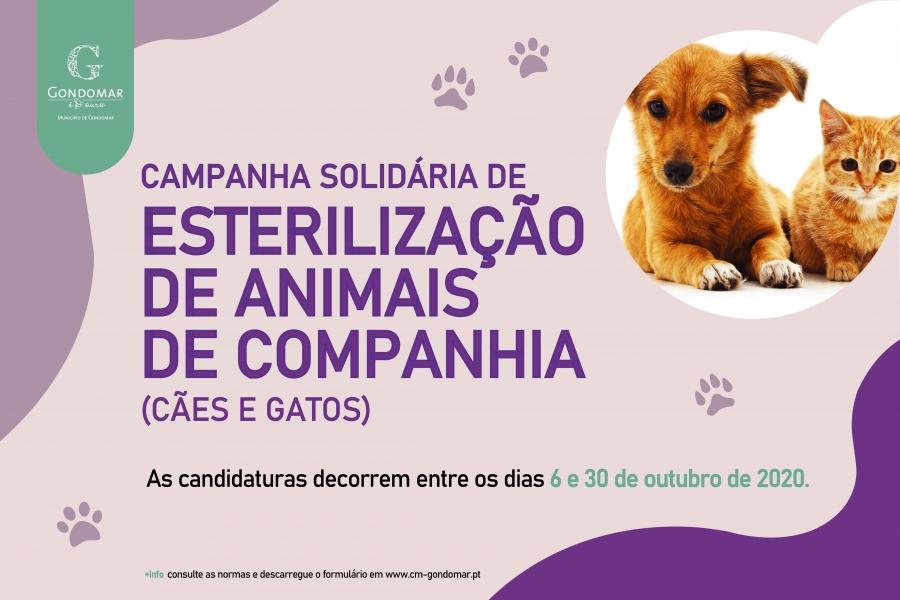 Campanha Solidária de Esterilização de Animais de Companhia