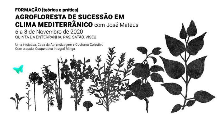 FORMAÇÃO | Agrofloresta de sucessão em clima mediterrânico