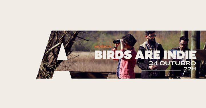 Birds Are Indie @Avenida Café-Concerto