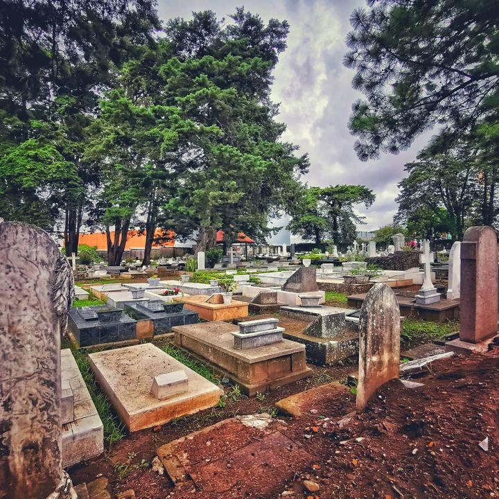 Safari Virtual por Cementerios de San José... Y otros espacios
