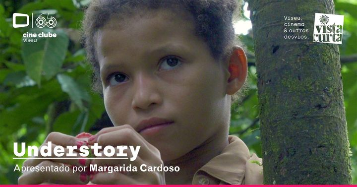 Understory (Margarida Cardoso, 2019)