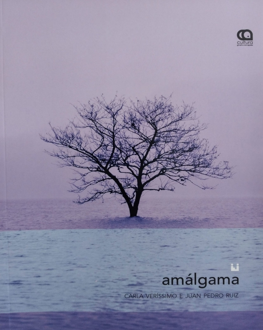 """Apresentação do livro 'Amálgama"""", de Carla Veríssimo e Juan Pedro Ruiz"""