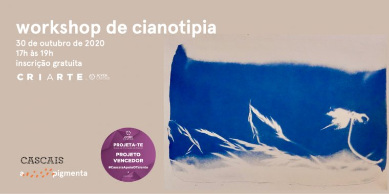 Workshop de Cianotipia com APIGMENTA