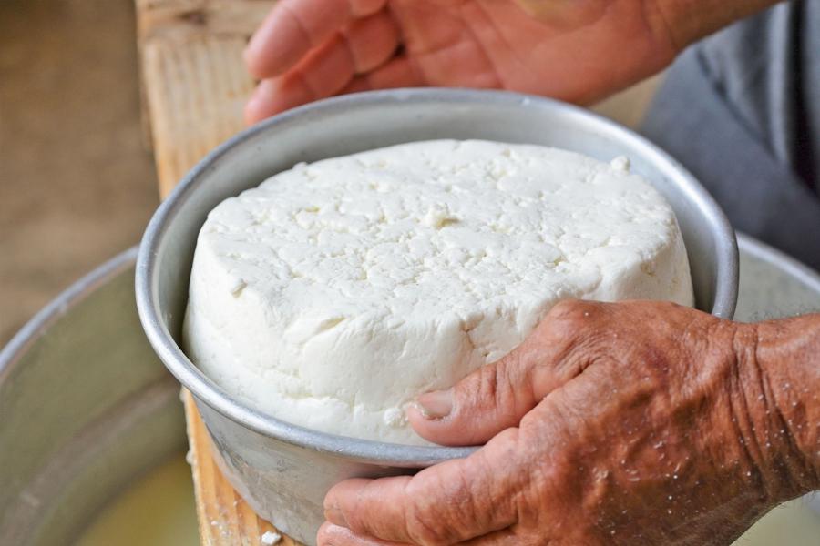 Taller de elaboración de queso artesano