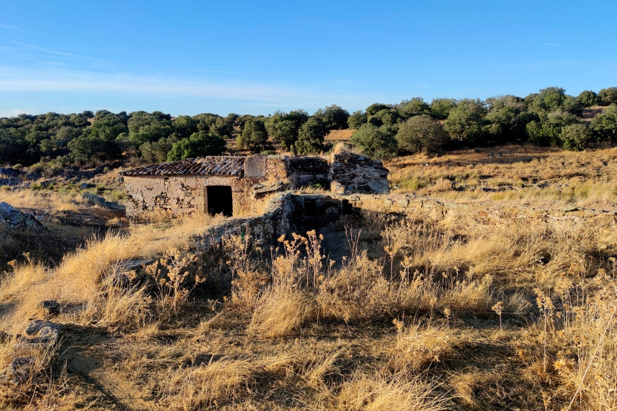 Paseo eco-etnográfico a los Molinos de Cabra